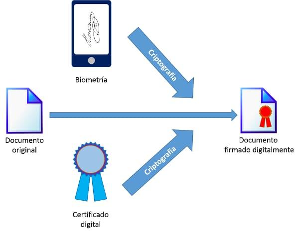 Esquema básico de firma digital